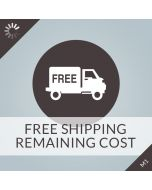 Free Shipping Remaining Cost